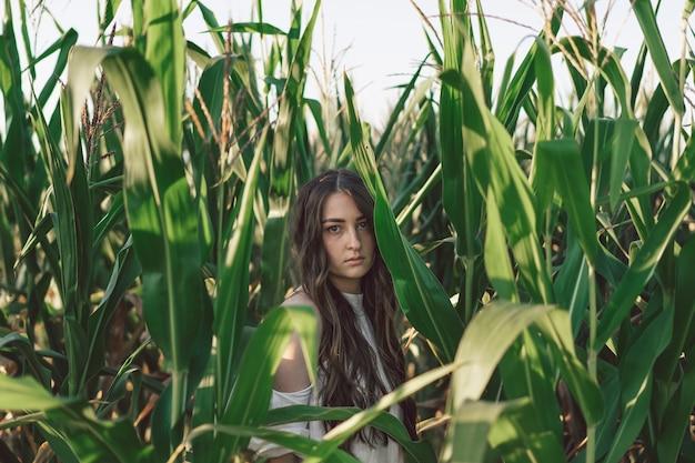 Une jeune fille dans un champ de maïs. tendance - visage de fille avec des feuilles de maïs. unité avec la nature. prendre soin de l'environnement