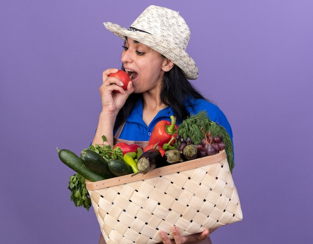 Jeune fille de jardinier caucasien portant l'uniforme et le chapeau tenant un panier de légumes et se préparant à mordre la tomate regardant vers le bas isolé sur un mur violet