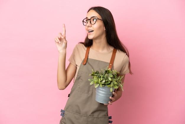 Jeune fille de jardinier tenant une plante isolée sur fond rose pointant vers le haut une excellente idée