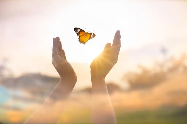 La jeune fille libère le papillon du moment concept de liberté