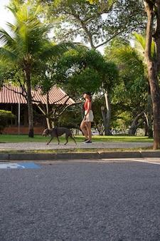 Jeune fille marchant le chien pit-bull dans le parc au coucher du soleil.