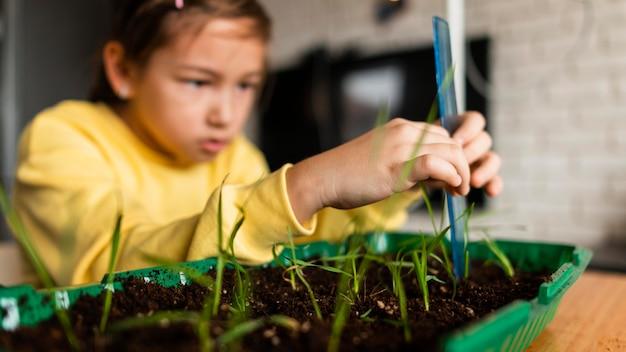 Jeune fille mesurant les pousses poussant à la maison