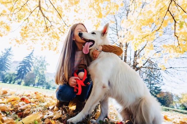 Jeune fille se promène dans un parc en automne avec un jeune chien de berger suisse blanc