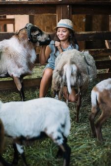 Jeune fille souriante jouant avec des moutons dans la grange