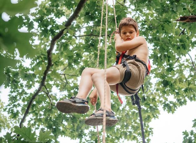 Jeune garçon portant un harnais d'escalade suspendu à une corde tout en grimpant à un arbre avec du matériel alpin et du matériel d'escalade, cours d'escalade pour enfants