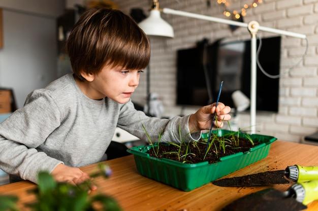 Jeune garçon à la recherche de plantes poussent à la maison