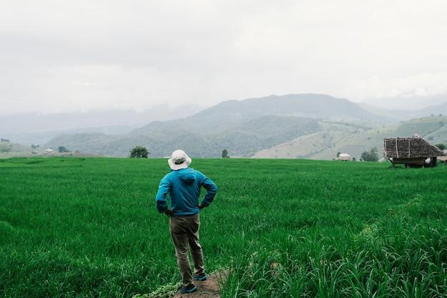Jeune garçon se détendre dans des rizières en terrasses vertes en vacances
