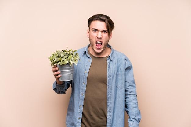 Jeune homme caucasien tenant une plante criant très en colère et agressif.