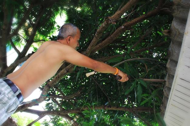 Le jeune homme coupe une branche d'arbre sur le toit.