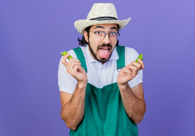 Jeune homme de jardinier barbu portant combinaison et chapeau tenant les moitiés de piment vert qui sort la langue se sentant comme il brûle dans sa bouche debout sur le mur bleu