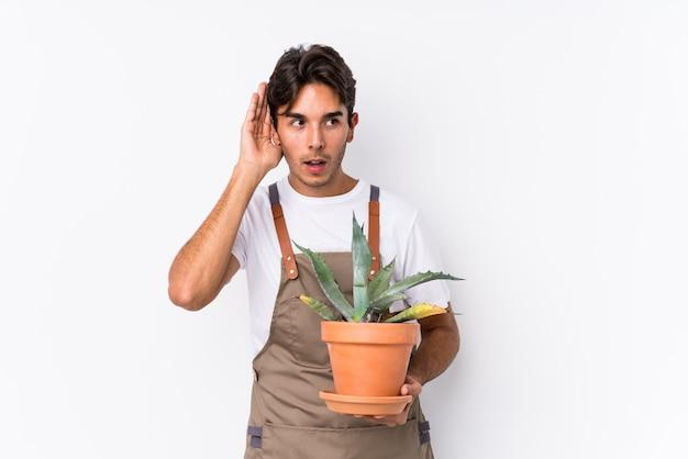 Jeune homme jardinier caucasien tenant une plante isolée essayant d'écouter un potin.