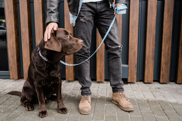 Jeune homme en jean noir touchant la tête de son animal de compagnie marron tout en se détendant en milieu urbain