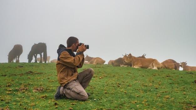 Jeune homme prenant des photos dans une montagne brumeuse avec du brouillard et des vaches concept de photographe d'automne