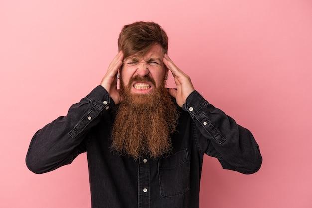 Jeune homme de race blanche au gingembre avec une longue barbe isolé sur fond rose touchant les temples et ayant des maux de tête.