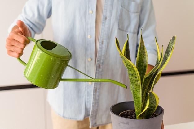 Jeune homme de race mixte avec une plante dans une cuisine