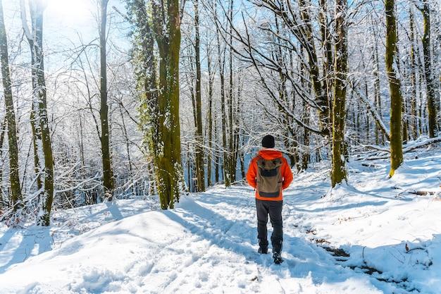 Un jeune homme sur le sentier dans le parc naturel nevado de artikutza à oiartzun près de san sebastian, gipuzkoa, pais vasco. espagne