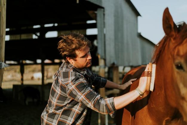 Jeune homme toilettant son cheval