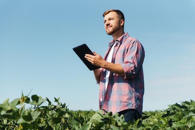 Jeune ingénieur agricole beau sur le champ de soja avec tablette dans les mains au début de l'été