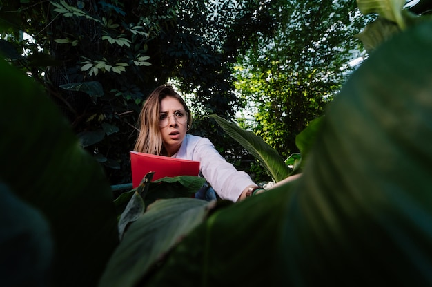 Jeune ingénieur agronome examine les feuilles en serre