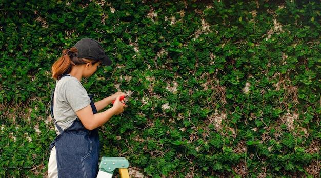 Jeune jardinier taillant les buissons avec des ciseaux de jardin. avec de l'herbe qui pousse sur le mur
