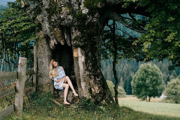 Jeune jolie femme blonde aux pieds nus robe romantique bleu assis dans le vieil arbre