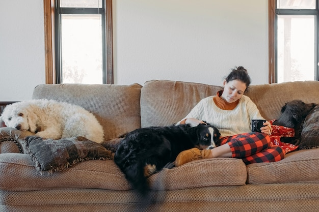Jeune jolie femme en vêtements décontractés assis sur le canapé avec ses chiens de compagnie dans le salon de sa maison de campagne confortable