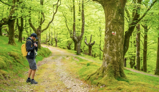 Un jeune père marchant avec l'enfant nouveau-né dans le sac à dos sur un chemin dans les bois en direction du pique-nique avec la famille
