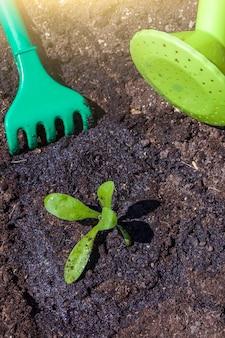 Jeune plant sur sol noir et matériel de jardinage : râteau bébé et arrosoir. jour de la terre de l'environnement. sauvez la planète et le nouveau concept de vie.