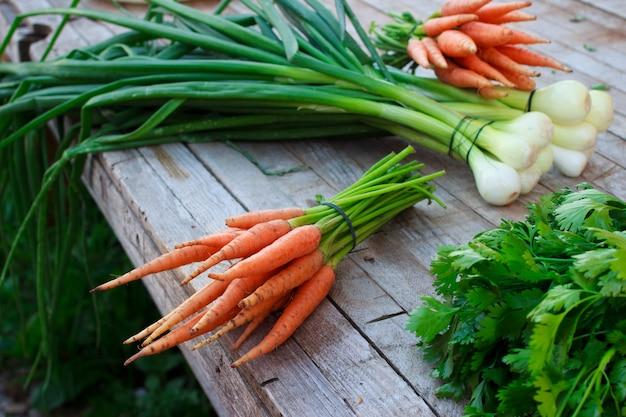 Jeunes carottes fraîches et herbes vertes sur fond de bois ancien