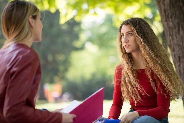 Jeunes étudiants étudient ensemble à l'extérieur