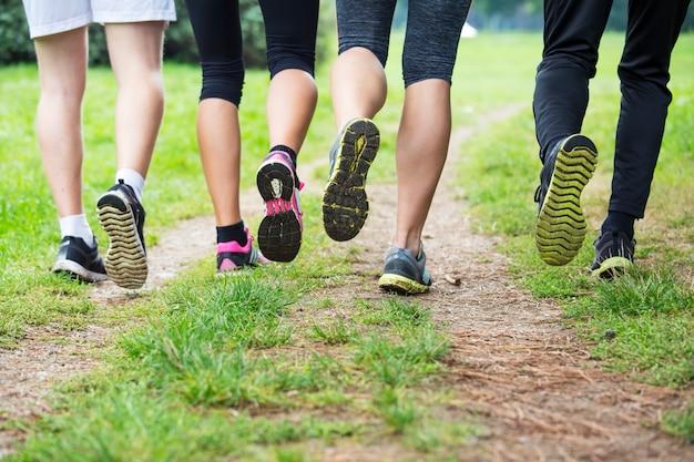 Jeunes en formation dans le parc