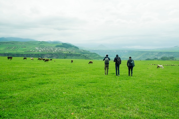 Les jeunes marchent dans un champ vert où les vaches sont au pâturage pendant la journée