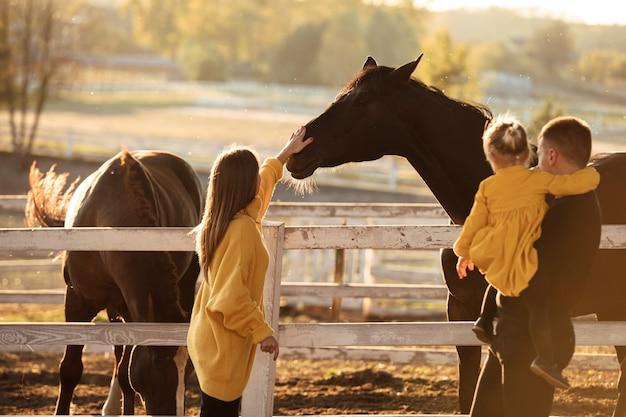 Les jeunes parents marchent avec leur petite fille près des chevaux dans le parc de l'automne.