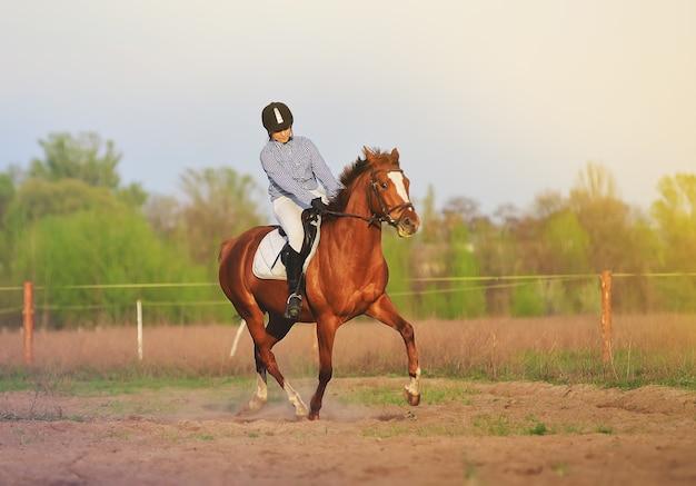 Jockey de fille montant un cheval