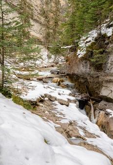 Johnston canyon dans le parc national banff, alberta, canada