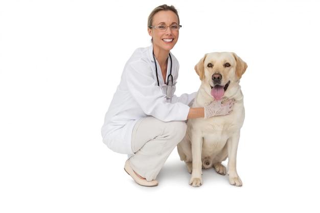 Joli chien vétérinaire labrador jaune souriant à la caméra