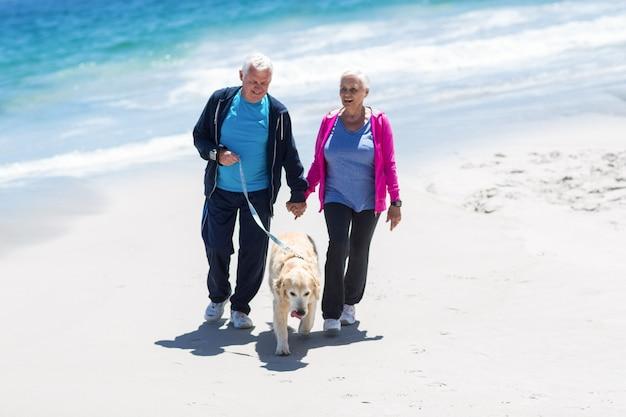 Joli couple d'âge mûr promener leur chien