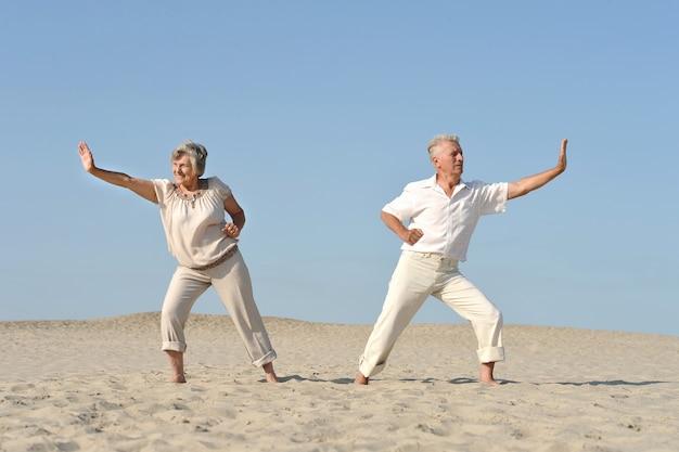 Joli couple de personnes âgées amoureux pratiquant le karaté