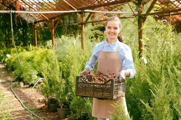 Joli jeune jardinier avec des plantes décoratives dans une boîte en plastique