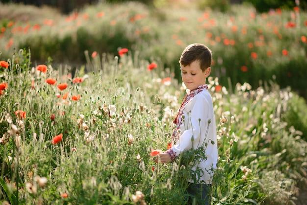 Jolie brunette garçon 5-6 ans en costume traditionnel dans un champ de coquelicot en été
