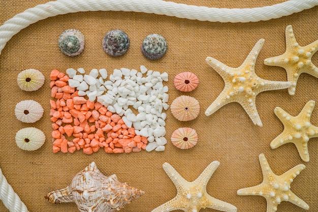 Jolie composition avec des objets marins