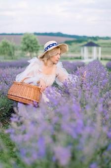 Jolie dame en robe et chapeau, récoltant de la lavande dans le panier.
