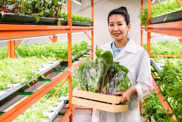 Jolie femme agronome asiatique avec des aliments biologiques frais emballés dans une boîte en bois se déplaçant le long de l'allée entre les étagères avec des semis