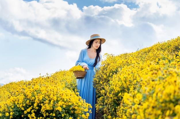 Jolie fille appréciant dans le champ de chrysanthèmes à chiang mai, thaïlande
