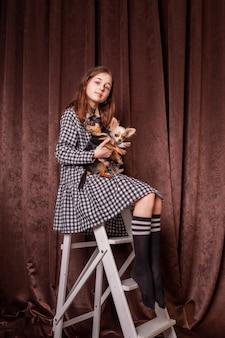 Jolie fille avec deux chiens chihuahua. chien chihuahua jeune animal fille heureuse animal de compagnie