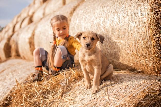 Jolie fille jouant avec le chiot sur des rouleaux de balles de foin dans le champ