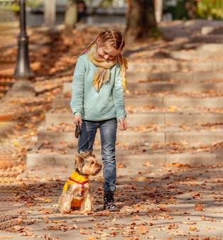 Jolie fille avec yorkshire terrier