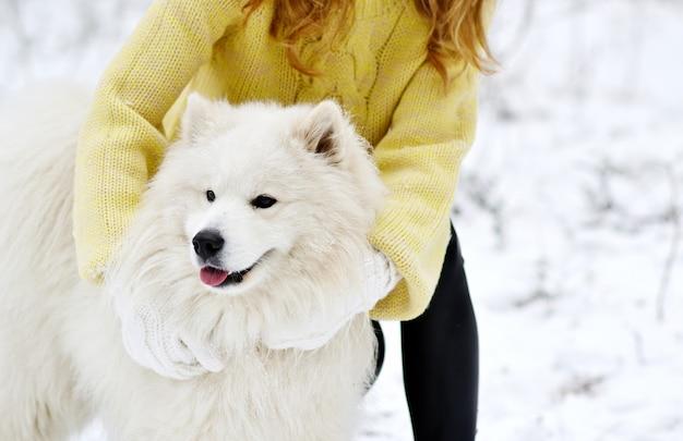 Jolie jeune femme dans le parc forestier d'hiver enneigé marcher jouer avec son chien blanc samoyède saisonnier