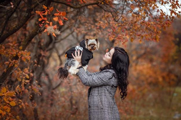 Jolie jeune fille avec chien yorkshire terrier dans le parc à l'automne. concept de soins et d'amitié