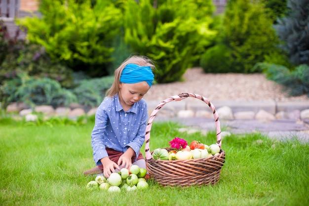 Jolie petite fille avec la récolte d'automne de tomates dans le panier